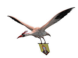 members/nysalor-albums-ontolosna-picture32044-crane.jpg
