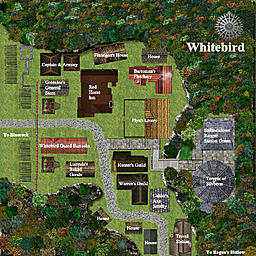 members/piscivorous-albums-+stillmeadows+trail-picture33165-whitebird.jpg