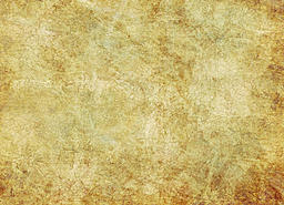 members/port+paladine-albums-map+elements-picture34877-antique_texture_by_solstock.jpg