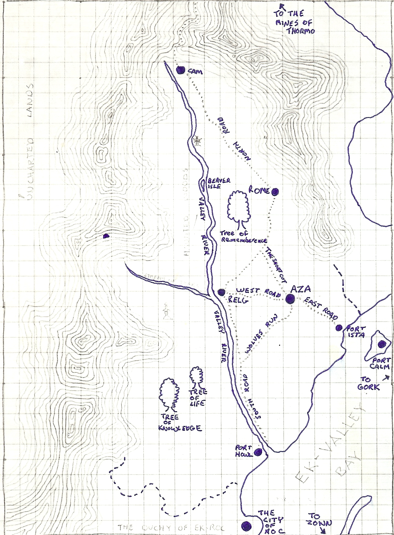 Valleywood - This is where wood elves lived.  I based them kind of off Elfquest, and they rode wolves.