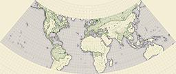 members/hai-etlik-albums-other-picture42829-lampshade-map-equidistant-conic.jpg