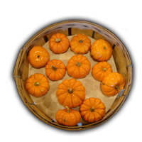 Name:  Basket-Pumpkins_bg.png Views: 1238 Size:  58.3 KB