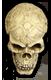 Name:  Skull1SM_bg.png Views: 1272 Size:  11.4 KB