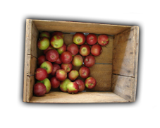 Name:  Apple-Box2_bg.png