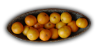 Name:  bowl-oranges_bg.png