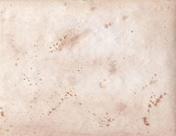 members/hqcostheta-albums-brown+watercolor+textures-picture47920-caption.jpg