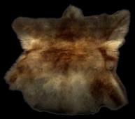 Name:  pelt_drape_chs-a.png Views: 1657 Size:  73.9 KB