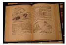 Name:  Book2145_bg.png Views: 863 Size:  22.8 KB