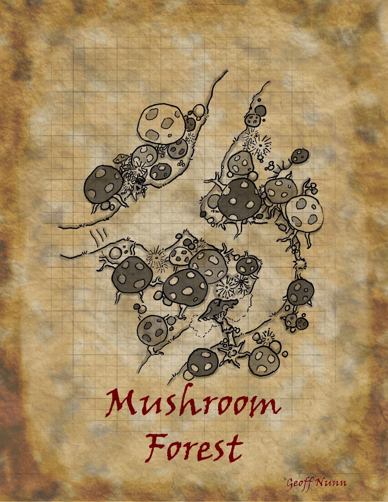 mushroom+forest