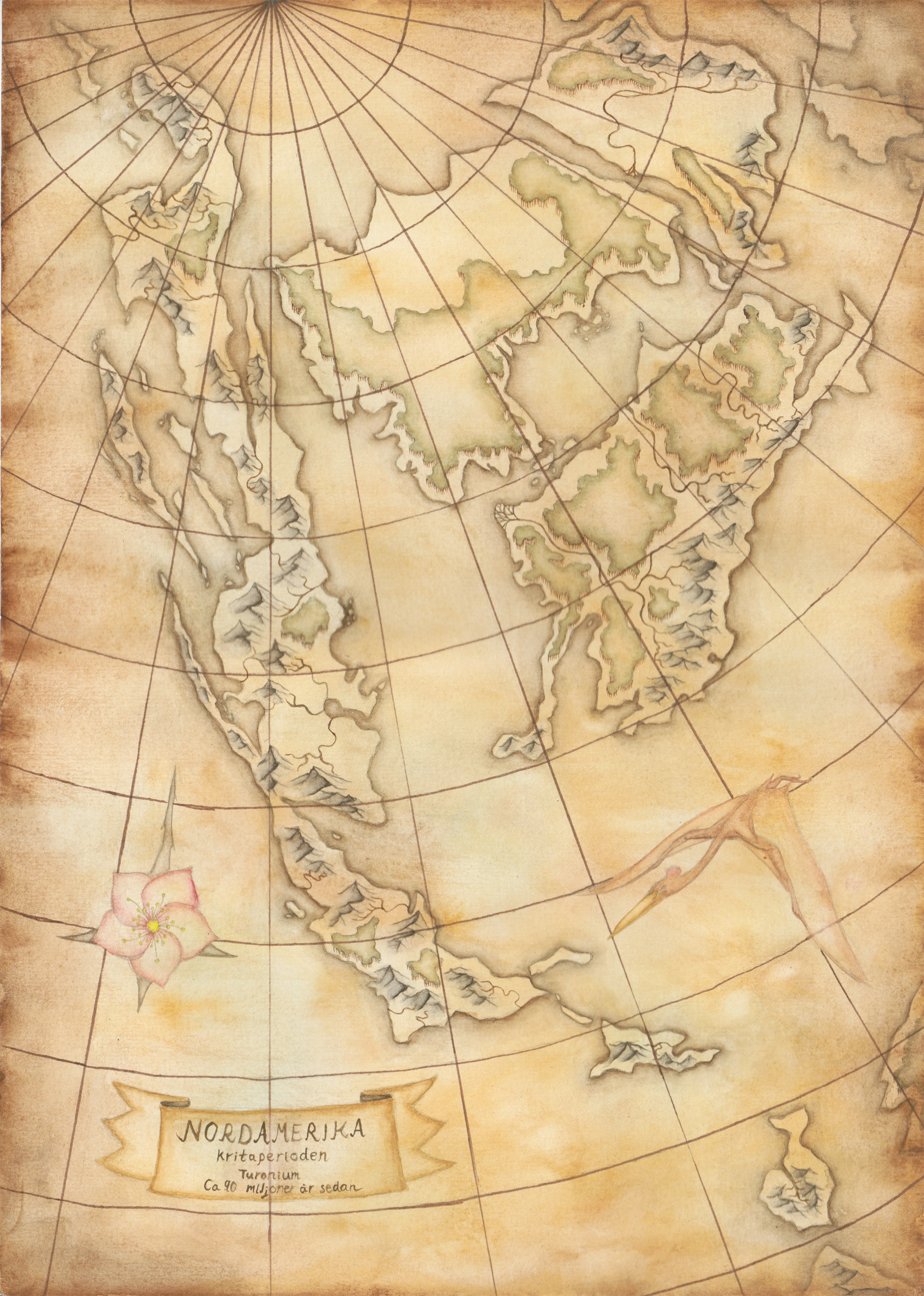 North America, 90 million years ago