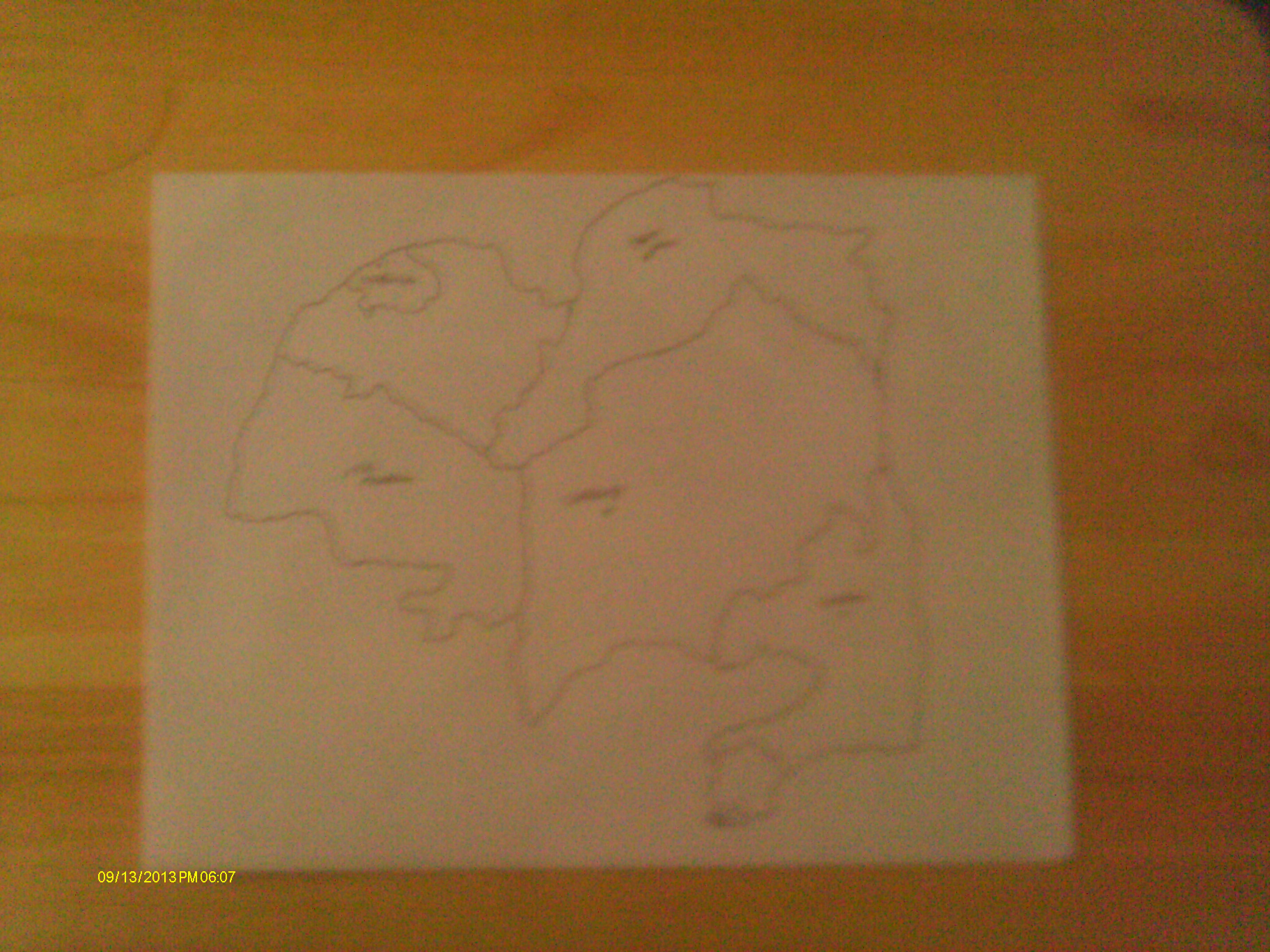 My first map without details. I'm start on details now. (13 Sept. 13)