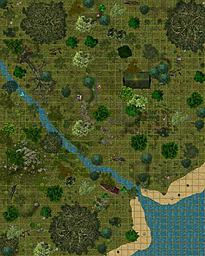 Ocean Camp Site - Basic wilderness map    A second Dundjinni map, and I really started to find all the fantastic community mapping objects.    This...